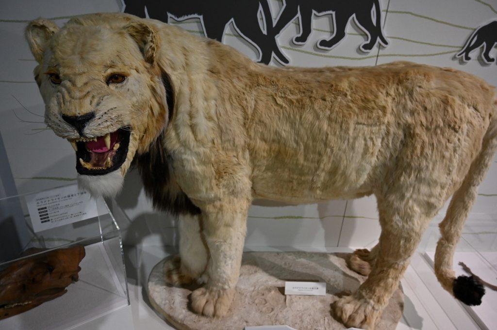 ホラアナライオン